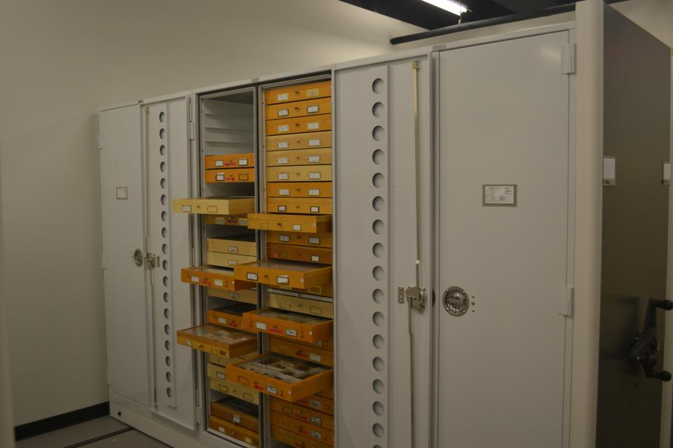 The ASU research insect collection