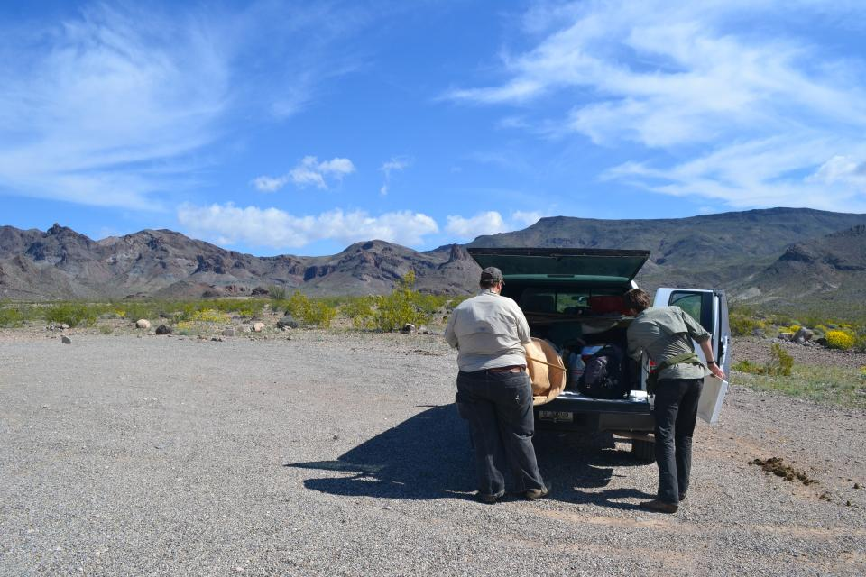 ASU researchers collecting insects in the Mohave Desert
